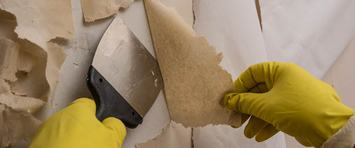 How To Paint Your Home: A DIY Beginners Guide